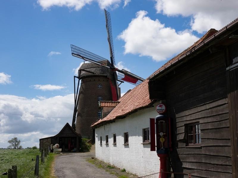 800x600-visite-guida-e-du-steenmeulen-et-du-musa-e-rural-159-1728