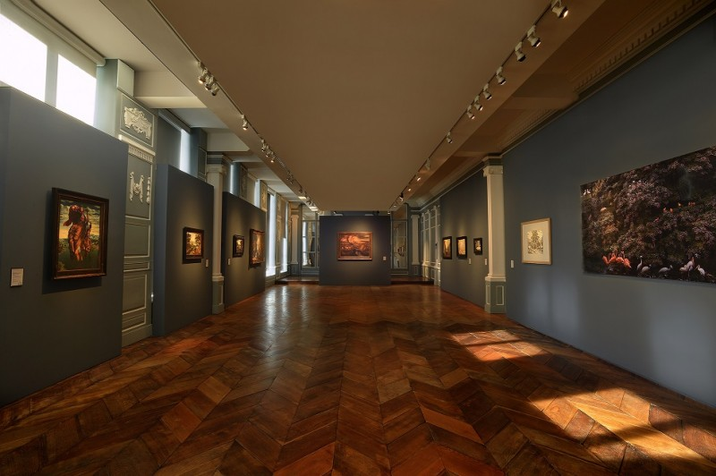 musee-de-flandre-817